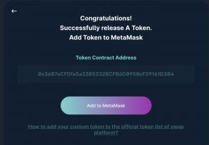 Add your token address to MetaMask
